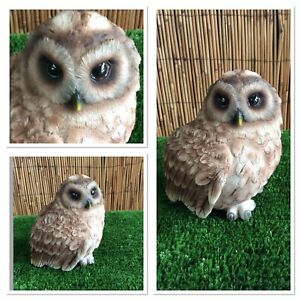 Vivid Arts - Little Tawny Owl *indoor/Outdoor* Lovely detail in