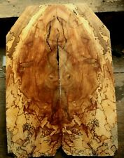 Spalted web line ambrosia maple drop top .37 guitar ink bass tele tonewood 1132