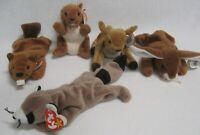 Ty Beanie Baby Lot of 5 Wildlife Animals EARS BUCKY RINGO NUTS WHISPER