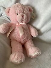 NWT Pink Teddy Bear Baby Gund Gift New Baby Girl