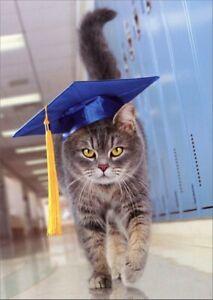 Avanti Press Cat with Graduation Cap Graduation Congratulations Card