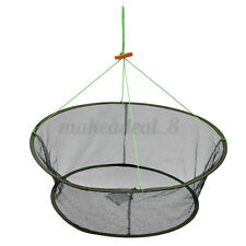 10''x 31'' Foldable Fishing Bait Crab Shrimp Net Trap Crawfish Cast Dip Minnow