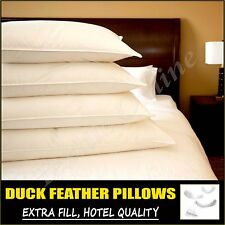 2 x LUXURY DUCK FEATHER & DOWN COMFORTABLE PILLOWS EXTRA FILLING HOTEL QUALITY