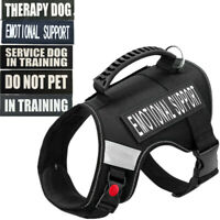 Service Dog Vest Jacket Training Adjustable Harness W/ Handle DO NO PET XXL XL L
