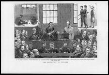 1880 Antique Print IRELAND LIMERICK FREEDOM CITY MR PARNELL LAND AGITATION (207