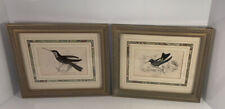 Lizars Art Print Hummingbirds Bookplate Framed #4 And #16 Set Of 2