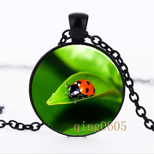 Ladybug Insect on Leaf  Glass Dome black Chain Pendant Necklace wholesale