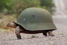 War Photo German turtle helmet, Wehrmacht uniform WW2 4x6 inch G