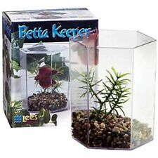 "Lm Lees Betta Keeper Hex Aquarium Kit 24 oz (4.8""L x 3.8""W x 5.4""H)"