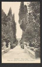 ITALY 783 TIVOLI -Villa d'Este Viale dei Cipressi conducente all'antico Ingresso