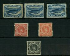 NFLD #54 #55 #56 #58 collection lot Canada Newfoundland