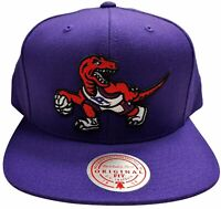 Men's Mitchell & Ness Team NBA Toronto Raptors HWC Team Ground Snapback Hat