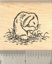 Grooming Bunny Rabbit Rubber Stamp G10721 WM rabbits, bunnies, cute