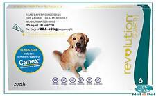 Revolution for Dogs 20.1kgs-40kg Flea Wormer Spot On Prevention Zoetis Green