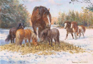 Heavy Horses playing Christmas Cards pack of 10 by R S Welch. C581X