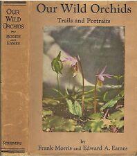 OUR WILD ORCHIDS Trails & Portraits by F Morris & E A Eames 1929 pub Scribner's