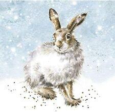 Wrendale Designs Winter Hare Christmas Cards - Set of 8 12cm Festive Cards