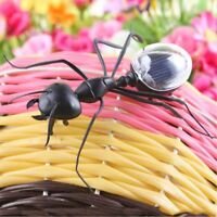 Cute Black Novelty Solar Powered Toy Ant Insect Kids Educational Toy Magic