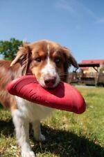 Juguetes KONG de goma para perros