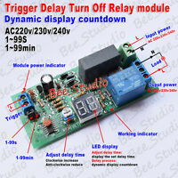 AC 220V 230V 240V LED Trigger Timer Countdown Relay Switch Time Delay OFF Module