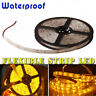 5M 300leds Bright 3528 SMD LED Strip Light Warm Yellow Waterproof DC 12V