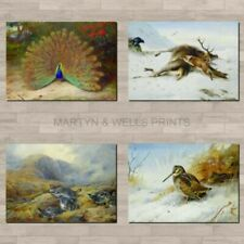 Paper Small (up to 12in.) Animals Art Prints