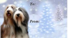 Bearded Collie Christmas Labels by Starprint