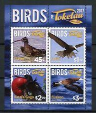 Tokelau 2017 MNH Birds 4v M/S Curlew Noddy Frigatebird Booby Bird Stamps