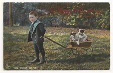 Young Boy pulling an  Antique Wagon, with his dogs on a Christmas Postcard