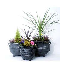 "Witches Cauldron Garden Planter Set in Pewter 12"",15"".18"" inch /patio flower pot"