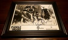 Autographed & Framed Puddle Of Mudd Full Band Signed 2001 Photograph Nirvana