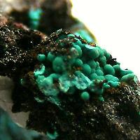 Pseudomalachite Bampfylde Mine North Molton Devon UK Mineral Specimen