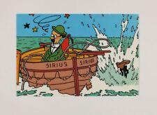 Carte postale Tintin Carte Q8, Tournesol