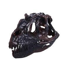 Resin Replica Retro Ceratosaurus Dinosaur Art Skull Bone Model Bar Decor BLK
