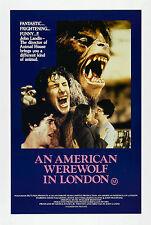 An American Werewolf In London - A4 Laminated Mini Movie Poster - John Landis