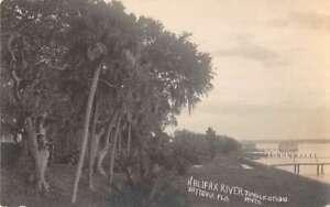 Daytona Florida Halifax River Jungle Studio Real Photo Postcard AA38578