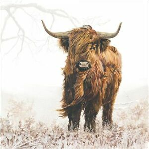 20 Paper Party Napkins Highlander Cow Pack of 20 3 Ply Serviettes Animals