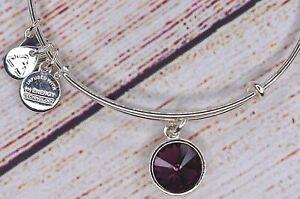 Alex and Ani Purple Amethyst February Birthstone Silver Bracelet