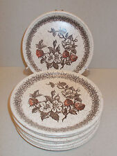 8 x Barratts of Staffordshire 17.5cm Side Plates Fruit Floral Design - Lovely