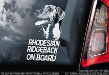 Rhodesian Ridgeback - Car Window Sticker - Dog on Board Sign Art Gift - TYP1