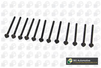 BGA Cylinder Head Bolt Set Kit BK4305 - BRAND NEW - GENUINE - 5 YEAR WARRANTY