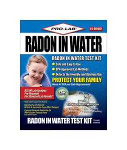 Pro-Lab  1 pk Radon Test Kit