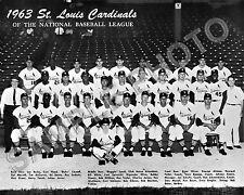 1963 ST. LOUIS CARDINALS BASEBALL 8x10 TEAM PHOTO