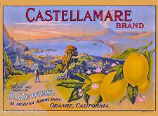 El Modena Orange Castellammare di Stabia Italy Lemon Fruit Crate Label Print