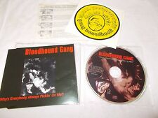 BLOODHOUND GANG - WHY'S EVERYBODY ALWAYS PICKIN ON ME - OZ CD + IRON ON TRANSFER