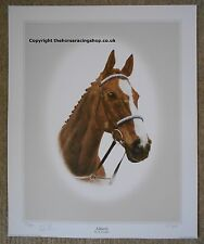 Aldaniti Limited Edition Print Grand National signed Bob Champion Horse Racing