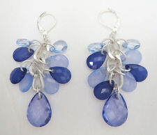 M1 Lia Sophia Jewelry Beautiful Blue Earrings in Silver