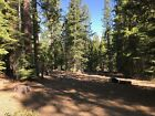 California Land For Sale - .917 Acres With Tall Trees & Level Lot - Modoc County