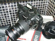 Canon EOS 20D 8.2 MP Digital SLR Camera - +THREE LENSES