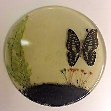 Mid Century Resin Butterfly Specimen Trivet Hot Pad New Design Inc. VTG MCM